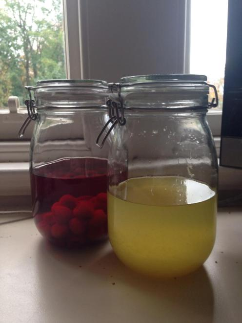 Limoncello and Raspberry Gin