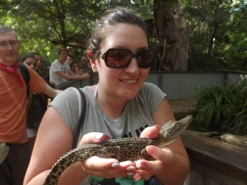 Baby Crocodile!
